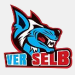 VER Selb