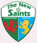 The New Saints FC (1)
